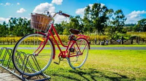 Стартуем на Ходынке: ТОП 7 мест столицы для велопрогулок