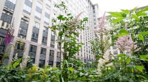 «Галс-Девелопмент» предложит отделку покупателям апартаментов
