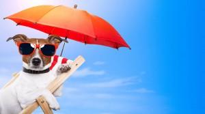 Как взять ипотечные каникулы