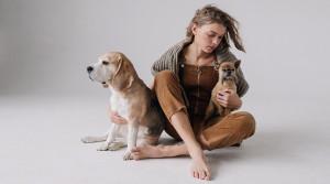 Как подготовить квартиру к появлению щенка?